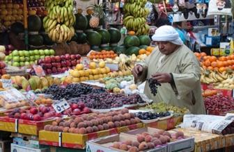 Kairo Transfers